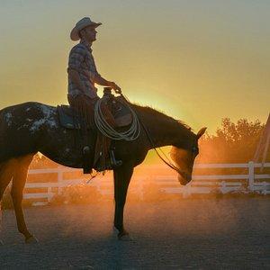 Co-Owner Daniel Salisbury on his horse Winterfell.
