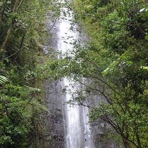 Falls in June