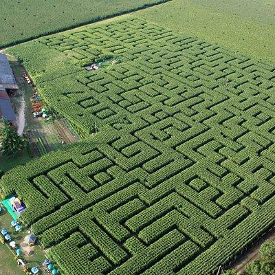 Labyrinthe avec accueil
