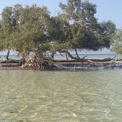 Amazing place should be visit with wonderful nature and very kind people that will give you thei
