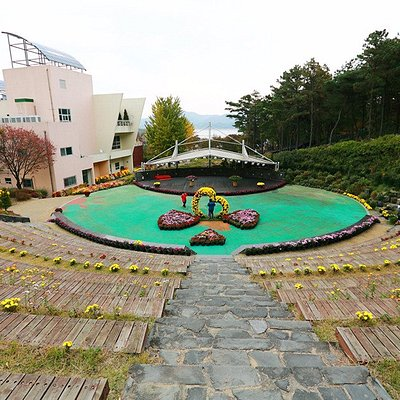 대청호자연생태관 국화축제행사사진