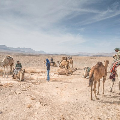 A short rest in the middle of a long ride- Ramon crater