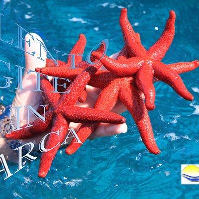 Salento Gite in Barca - Escursioni Otranto