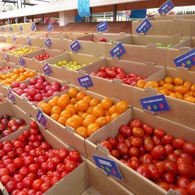 Några av tomatsorterna att välja mellan