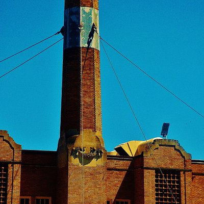 The Large Chimney that the Vaux Swifts return each year to