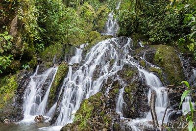 Cascades. Las Tangaras Reserve. Colombia.