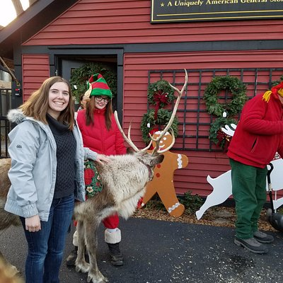One weekend before Christmas, Norton's will have real reindeer!!