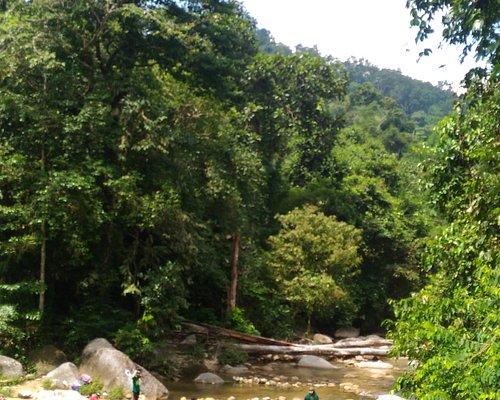 Burmese Pool