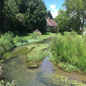 The Creek at Abingdon Muster Grounds