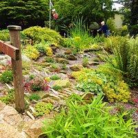 Leasowes Walled Garden