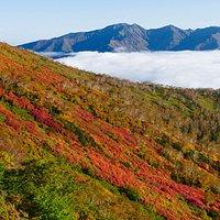 赤岳の紅葉