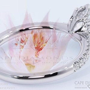 Diamonds Cape Town - South African Floral Protea Ring Designs