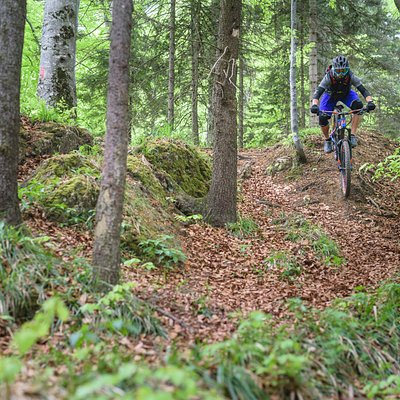 From steep valleys to wild forests and 100 km of trails are waiting to be enjoyed