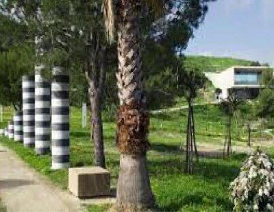 Parco Pignera
