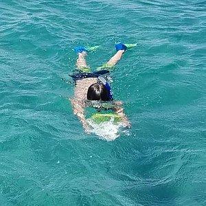 Snorkel trip with Capt. Tim