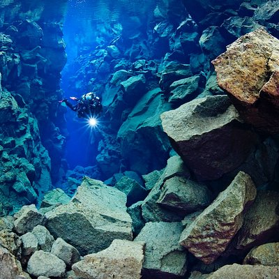 The Silfra fissure, is known as one of the top dive sites in the world!