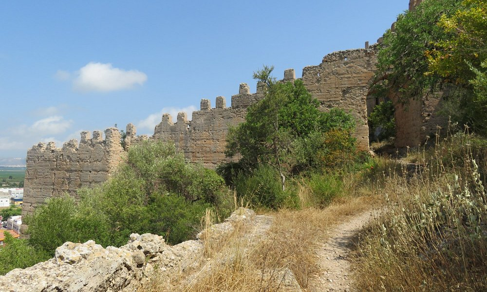 The castle wall.