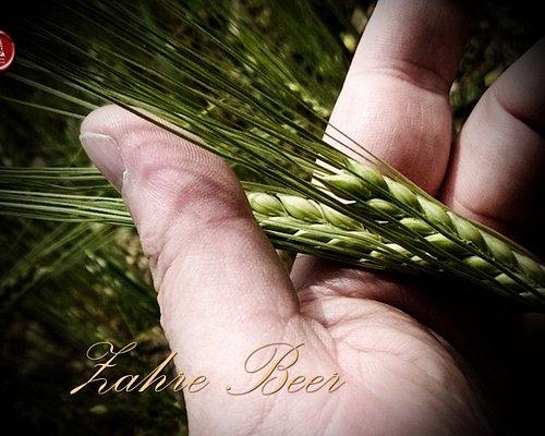 Zahre Beer, uno dei primi birrifici agricoli in Italia che utilizza il malto da produzioni propr