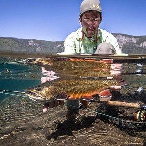 Brook trout, Fonk Lake