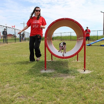 agility demonstration at Grand Opening of Bark Park
