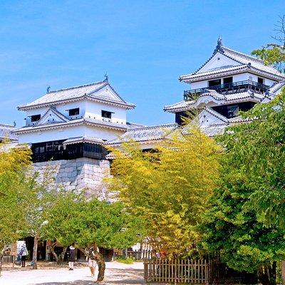 Matsuyama Castle #5