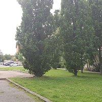 Gedenkpark Nicolaistrasse