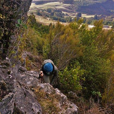 Up along the Escarpment track