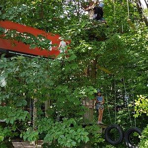 Waldseilgarten Kelkheim