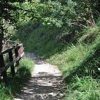 Sentiero verso il Belvedere © eccoLecco