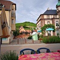 pohľad z terasy hotela na blízke vinice