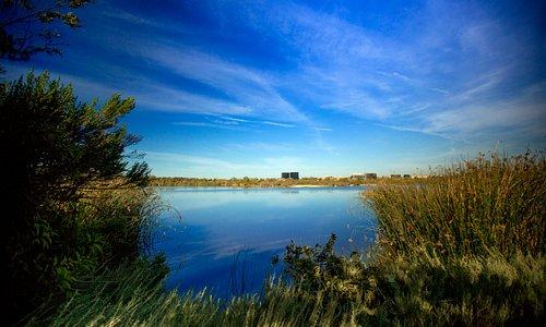 San Joanquin Wildlife Marsh & Sanctuary