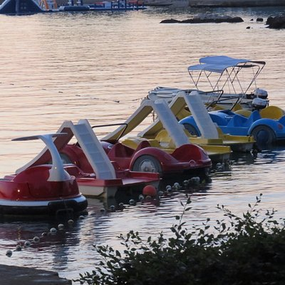 Rent a pedalboats