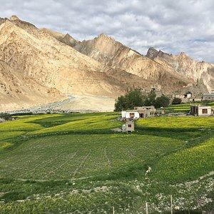 Vers le village de Tachugtse, à 4000m