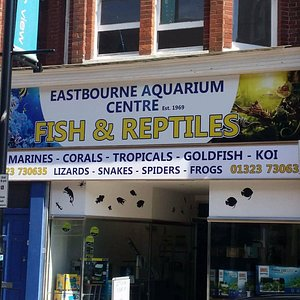 New signage, New location, and a vast improvement on the old shop