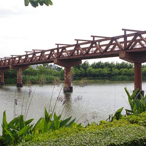 The Holistic View Bridge, this leads into the southern part of the park.