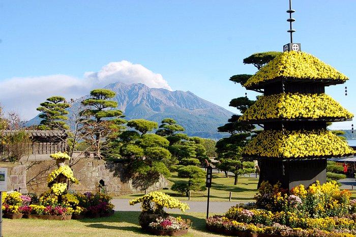 仙巌園 菊祭り