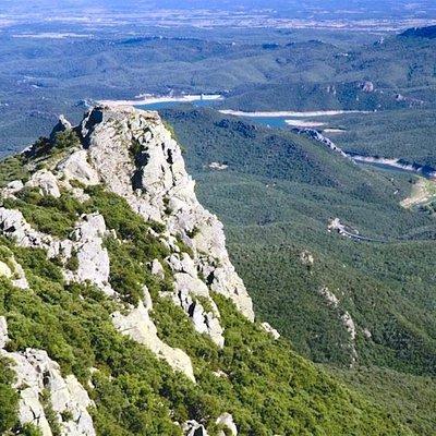 Forêt communale de Céret (Pyrénées-Orientales, Occitanie), France.