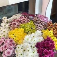 Lola's Floristas