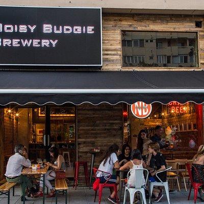 Noisy Budgie Brewery