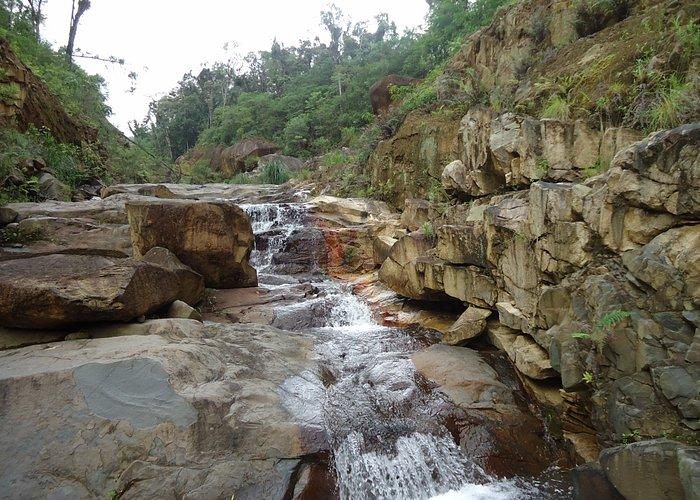 Rio da Serra da Prata, Floresta Br 277 Km22