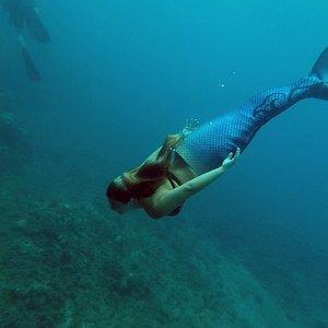 Even saw a Mermaid