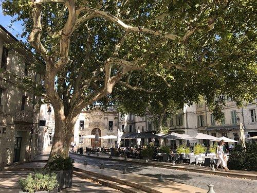 Place Crillon