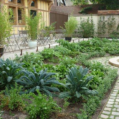 petit parterre ddu jardin,à gauche de l'accès par la ruelle des chats