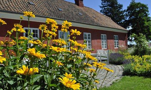 Et besøg på udstillingen kan nemt kombineres med et besøg i museets dejlige have.