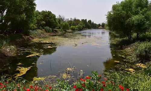 Aammiq Wetland, West Bekaa nice place for Hiking and Biking.