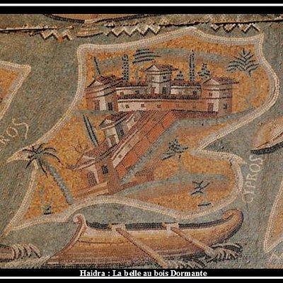 l'une des mozaiques  trouvé dans le site archéologique Haidra