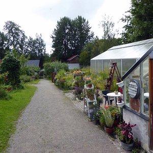 Växthusen