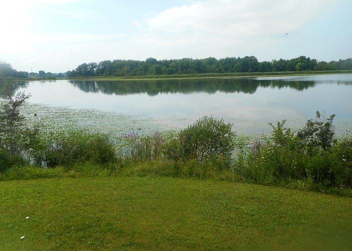 View over lake...