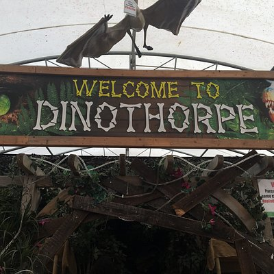 Dinothorpe display