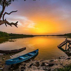 Punta Laguna Photo Safari private tour
